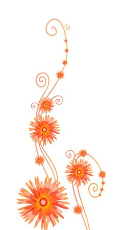 Vector illustration of curly orange flowers isolated on white