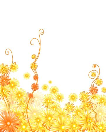 golden daisy: Vector illustration of golden gerberas