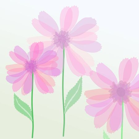Vector illustration of transparent purple flowers Vector