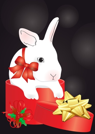 Vector of rabbit in the red box on a black background Vector