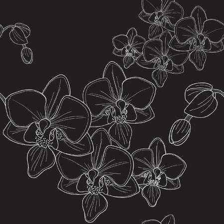flores exoticas: Vector de patr�n transparente negra con orqu�deas Vectores