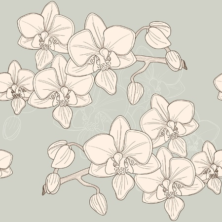 Seamless pattern with pink orchid, vector Vector