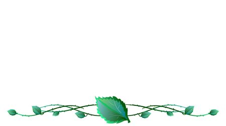 barbed wire: illustration of leaves with barbed wire