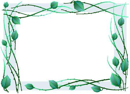 barbed wire frame: illustration of green frame made of leaves  Illustration