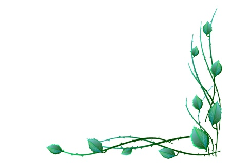 Green leaves in the corner  Vector