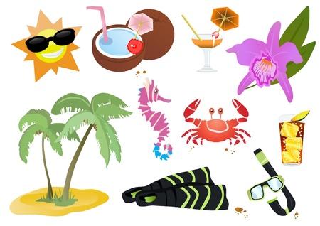 coconut crab: illustration of beautiful summer icons and symbols   Illustration