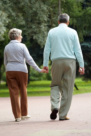 fidelity: Rear view of senior couple walking down in park and chatting