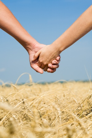 Conceptual image of female and male hands together  photo
