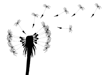 Vector illustration of blowing dandelion on a white background