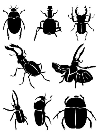 Vector illustration of black beetles on white background