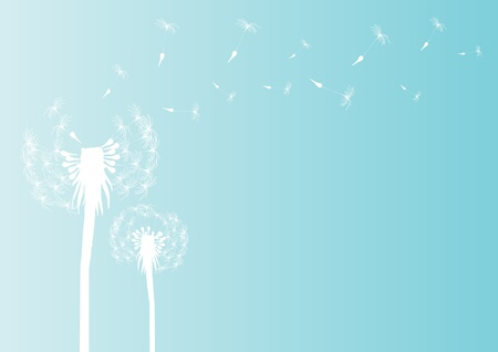 Vector illustration of blowing dandelion silhouette on blue background