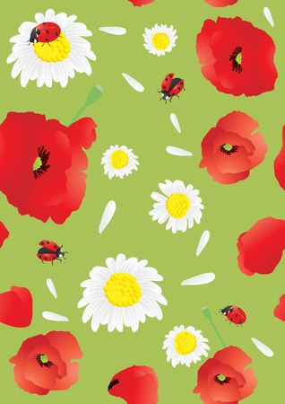 Vector illustration of beautiful poppies and chamomiles background   Vector
