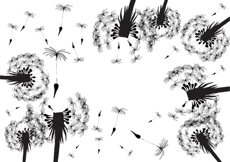 Vector illustration of blowing dandelion silhouettes on a white background   Stock Vector - 9720656