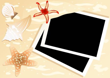 Vector illustration of two instant photos with starfishes and seashells near by  Vector