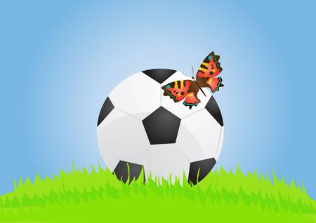 illustration of soccer ball with butterfly on the lawn  Vector