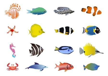illustration of set of sea creatures      Illustration