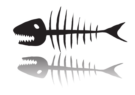 skeleton fish: illustration of black skeleton of fish