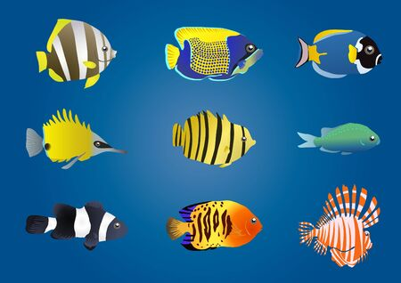 illustration of exotic fishes on a blue background Stock Vector - 9728088