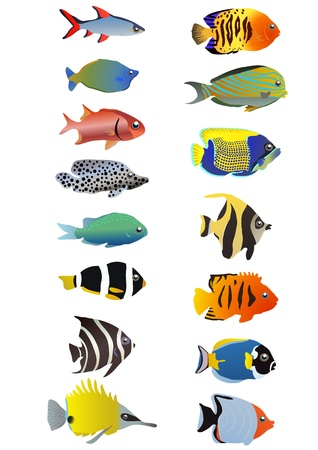 fishy: Two line of tropical fishes, illustration