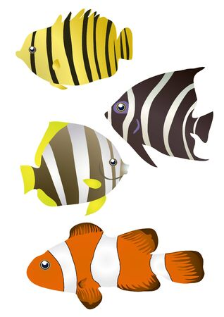 illustration of stripy tropical fishes  Vector