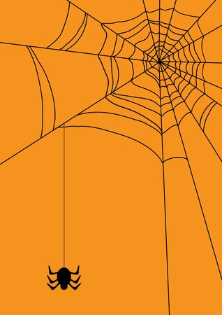 illustration of spider&iuml,&iquest,&frac12,s web with spider Vector