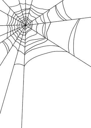 illustration of spiders web