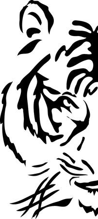 bengal: Half muzzle of bengal tiger, illustration