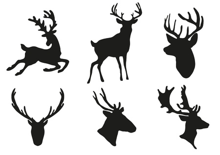 vertebrates: illustration of collection of deers silhouette