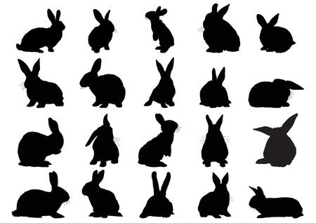 Conjunto de siluetas negras de conejos aislados en blanco Ilustración de vector