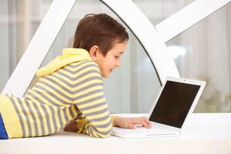 Portrait of smart schoolboy typing on laptop Stock Photo - 9819742