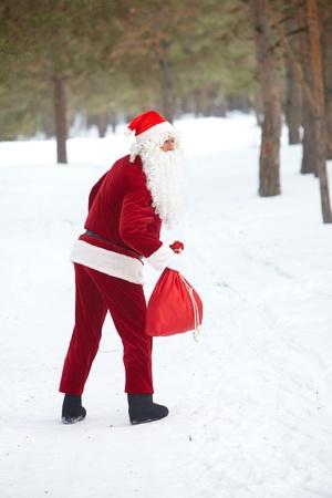 두서없는: 겨울 나무 산타 클로스 방랑