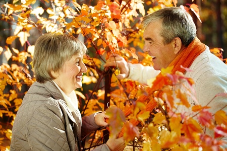 Photo of amorous aged man and woman looking at each other in autumnal park Stock Photo - 10944565