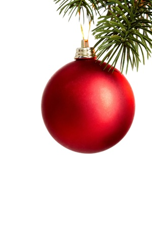 Red Christmas bauble on coniferous branch against white background photo