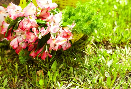 pinkish: Bunch of pinkish flowers lying in basket Stock Photo