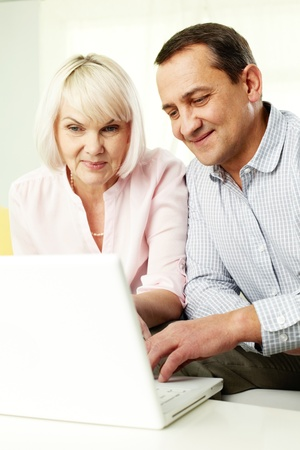 Portrait of mature man and his wife working with laptop at home Stock Photo - 11622368