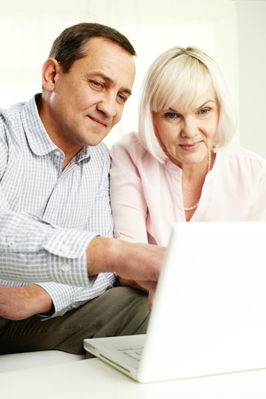 Portrait of mature man and his wife working with laptop at home Stock Photo - 12319686