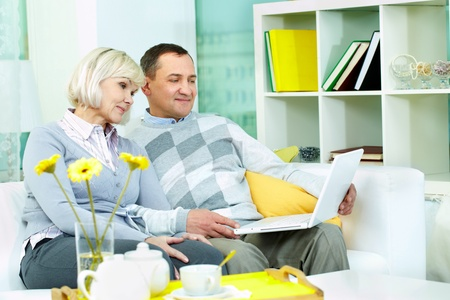 Portrait of mature man and his wife working with laptop at home Stock Photo - 12328590
