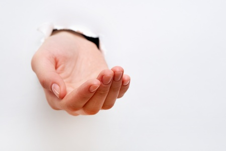 Image of human hand keeping palm up in isolation Stock Photo - 12620191