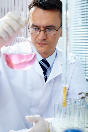 Serious clinician gazing at flask with pink liquid in laboratory photo