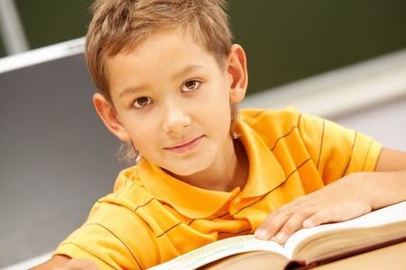 lad: Portrait of smart lad looking at camera during reading lesson