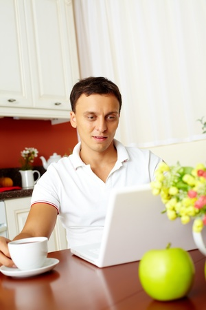 computer user: Portrait of handsome man looking at laptop display in the kitchen