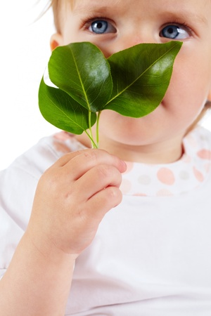 pureness: Conceptual image of innocent child holding fresh green leaves
