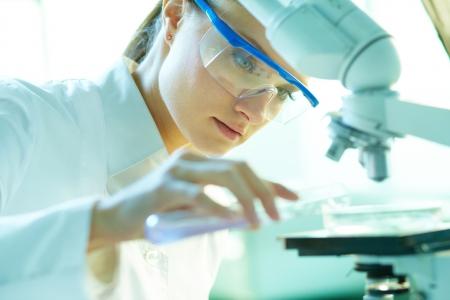 farmacia: Qu�mico serio femenino que trabaja en el laboratorio de Foto de archivo