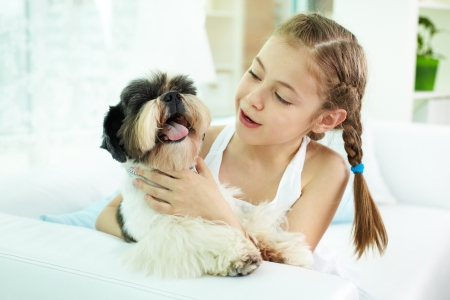 shihtzu: Portrait of happy girl holding shih-tzu dog and looking at it Stock Photo