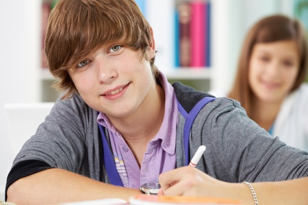 lad: Portrait of happy lad looking at camera during lesson