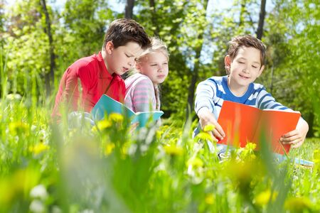 Three friends reading on the lawn  Stock Photo - 17154200