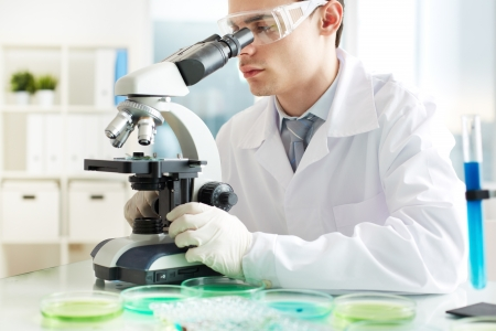 clinician: Serious clinician looking into microscope in laboratory Stock Photo