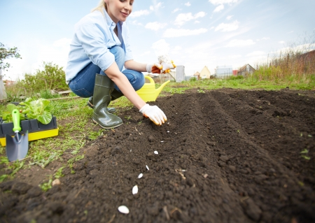Image of female farmer sowing seed in the garden photo
