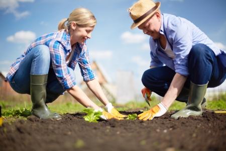 Bild eines Paares der Landwirte Sämling Sprossen im Garten