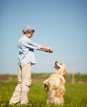 Portrait of cute lad playing with Labrador on grass